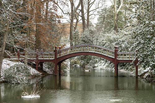 Scenes from a snow day: Crim Dell