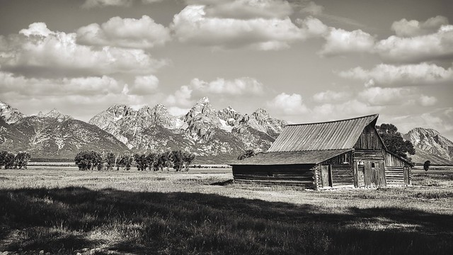 Gran Tetón National Park. Moose, Wyoming