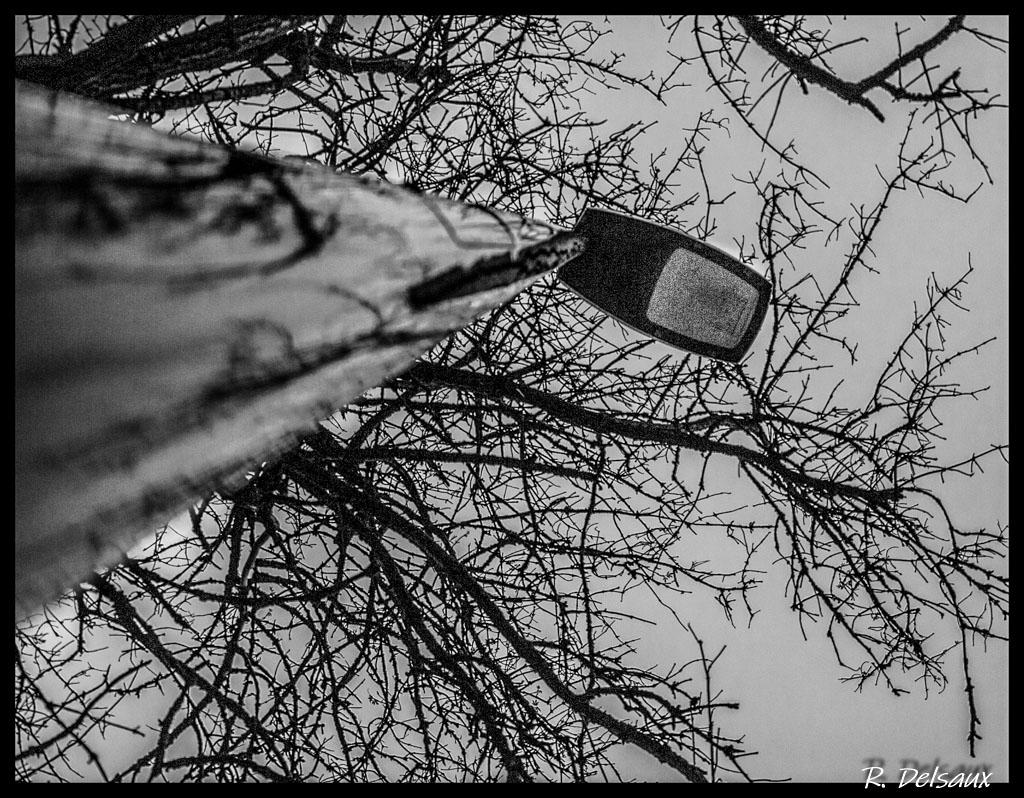 Noir et Blanc / Sépia / Désaturation partielle / Traitements divers - Page 13 50905660716_dd597fb7d0_o