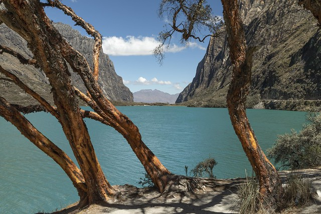 Queñuales. Lago Llanganuco Chinancocha. Huascarán
