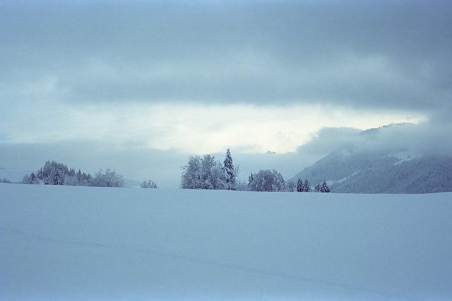 Portra Snow  (In Explore - Retina IIIC / Portra 400)