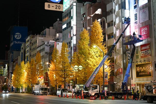 z5012s-akiba-04