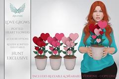 [Ari-Pari] Love Grows