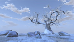 February !Skifija 12 Months Auto Season Tree v2