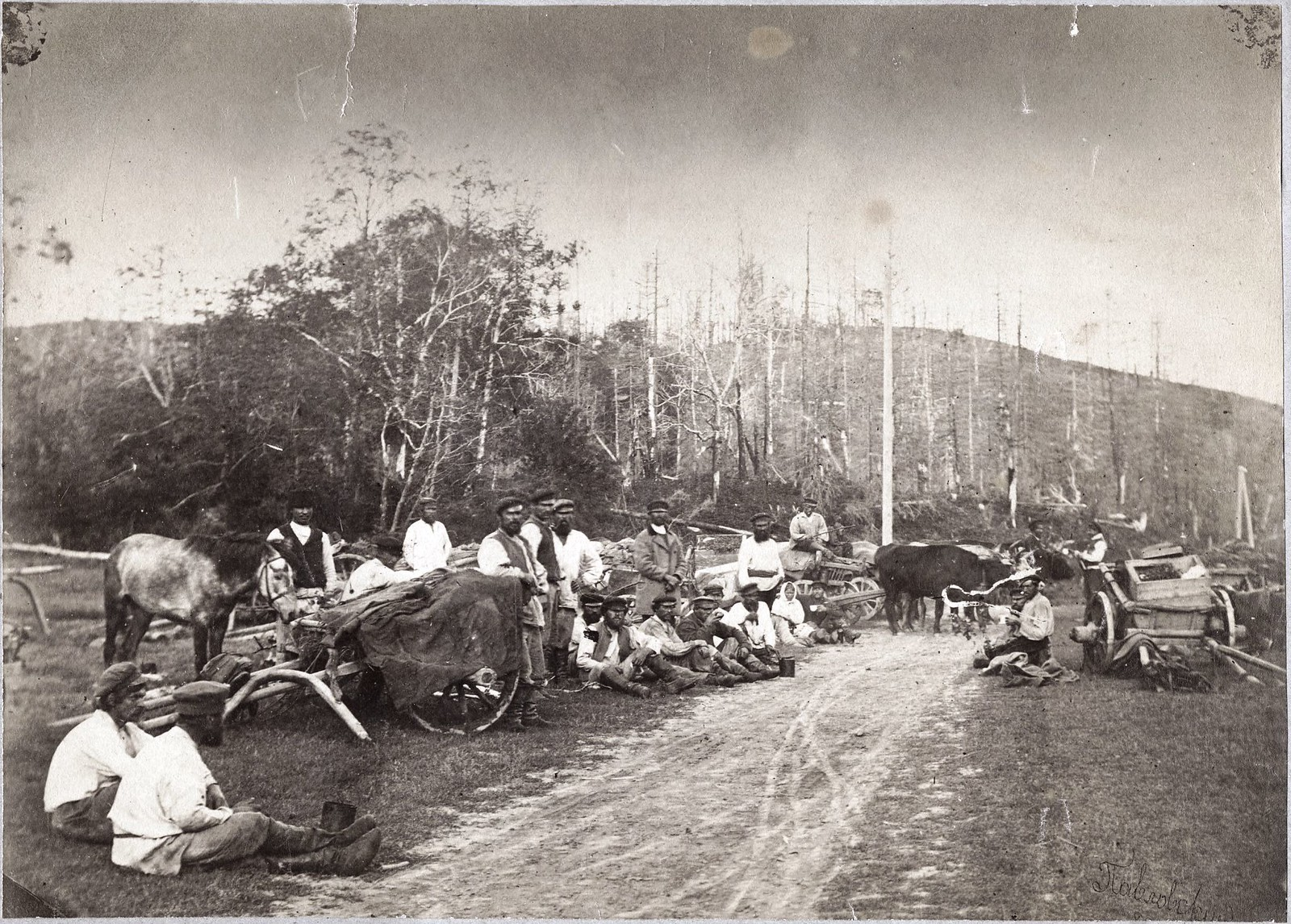 20. Транспорт урочников, идущий из Рыковска в Александровск за грузом (на острове Сахалин). 1900-е