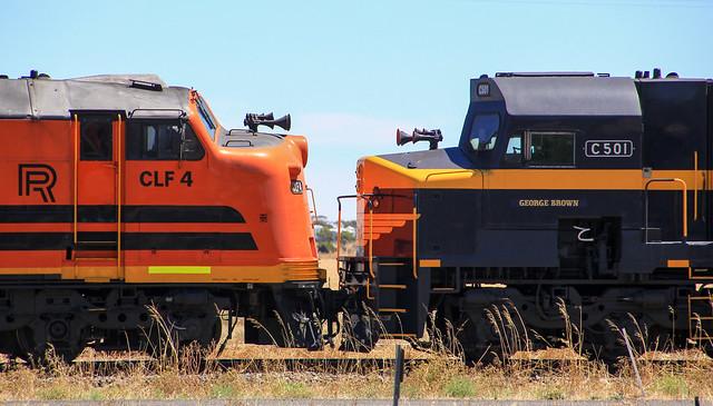 CLF4 v C501