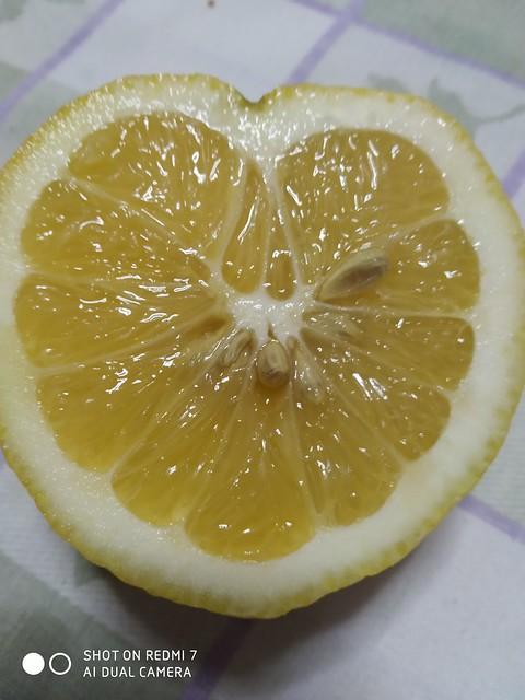 The heart of the lemon!!