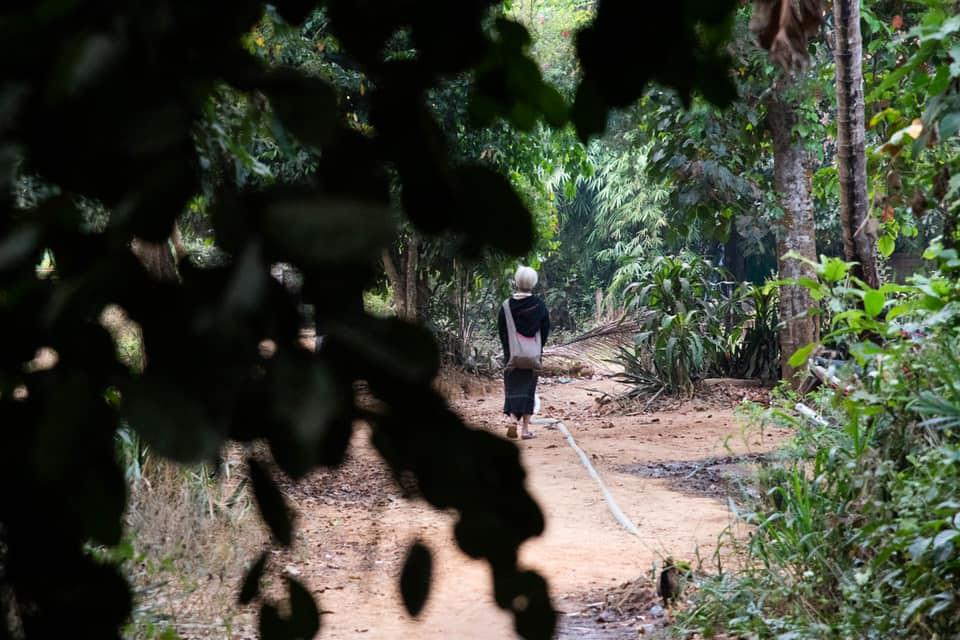 ป่า กระเหรี่ยง