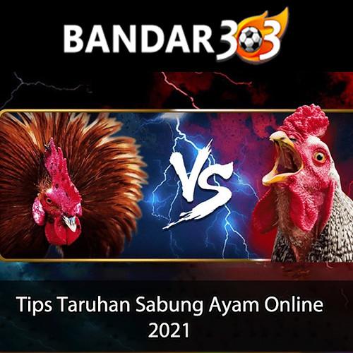 Tips-Taruhan-Sabung-Ayam-Online-IG