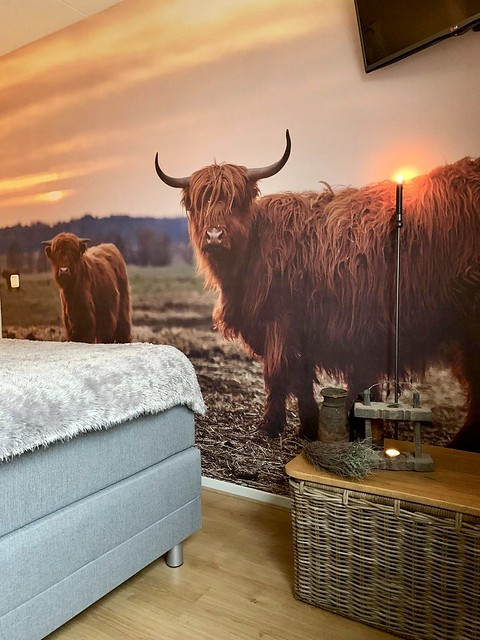 Fotobehang Schotse Hooglander slaapkamer vloerkandelaar