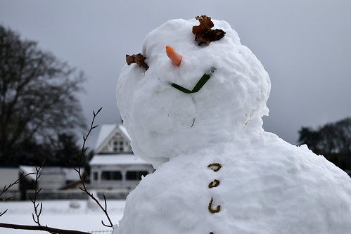 Oxford: The Parks; Snowperson