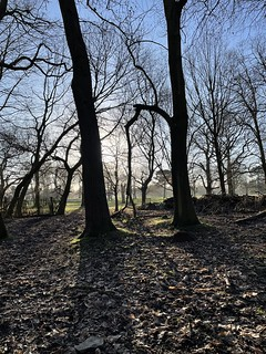 Wollaton | by fieryredsmh