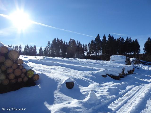 01 21 - Harzwanderung im Schnee
