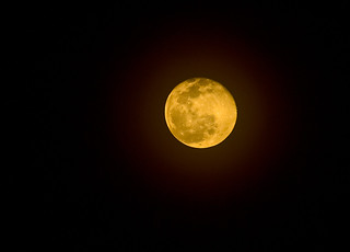 Harvest Moon | by Deer Creek Photography