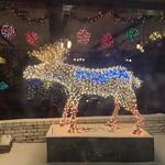 The Antlers Moose