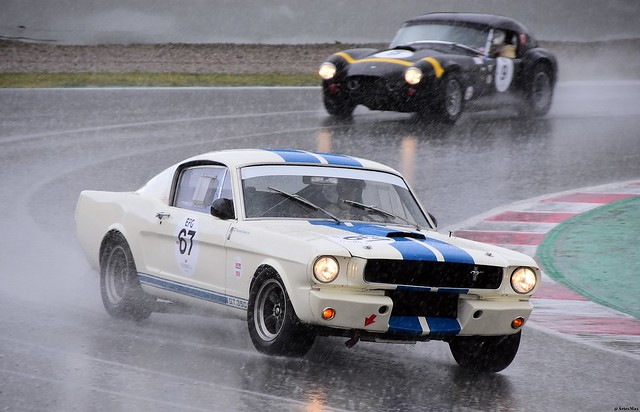 FORD  Shelby GT 350 1965 / Thomas STUDER / CHE