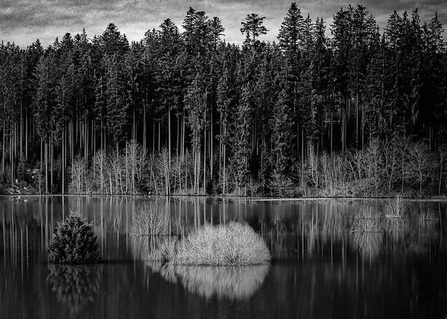 Schmelzwasser aus dem Schwarzwald wird gestaut