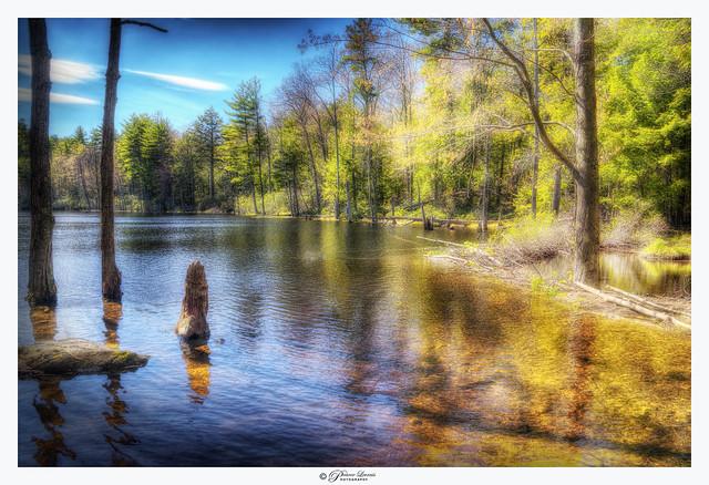 Batcheldor Pond, NH USA (explored 02/05/2021)