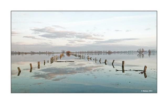 Bislicher Insel...Winterhochwasser I