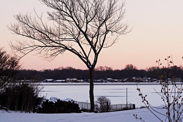 Wonders of Winter #35