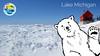 polar bear NOSB GLB Virtual background 1920x1080 copy