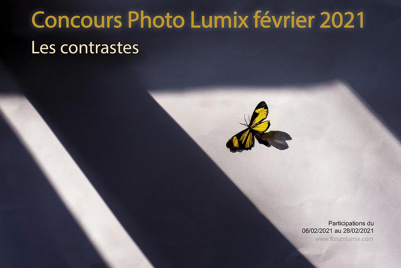 """concours du mois de fevrier 2021 """" LES CONTRASTES """" 50914263637_e21096e0b3_c"""