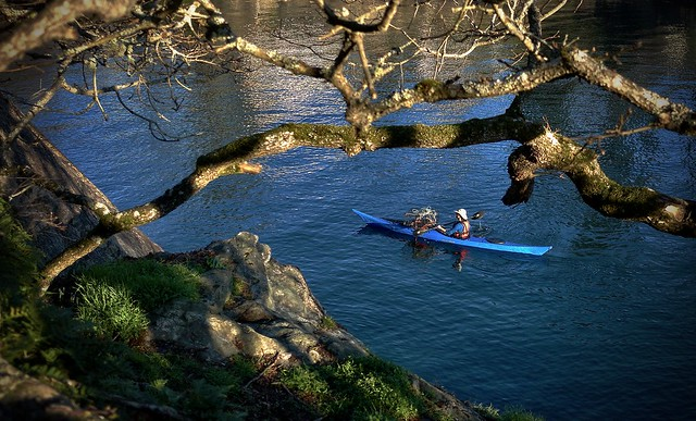 QUIET KAYAKER