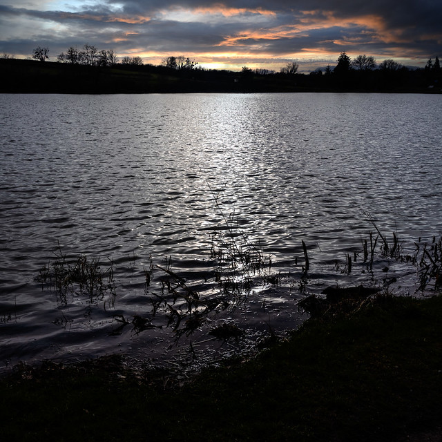 Fin d'après-midi sur l'étang