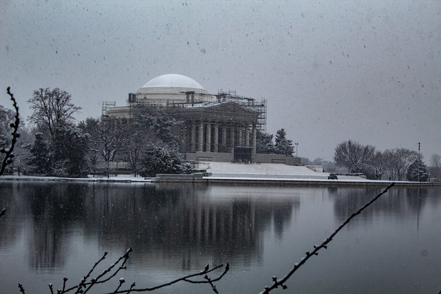 Jefferson Memorial with Cherry Blossom Branch