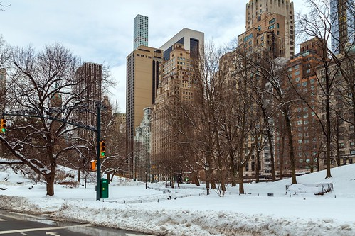 Central Park 2-3-21