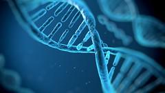 Il DNA, acido nucleico alla base della vita – scheda didattica