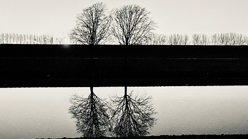 Reflection in pairs