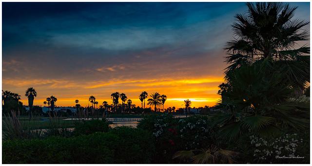 Atardecer en el lago del golf // Sunset at the golf lake. (EXPLORE 06/02/2021).