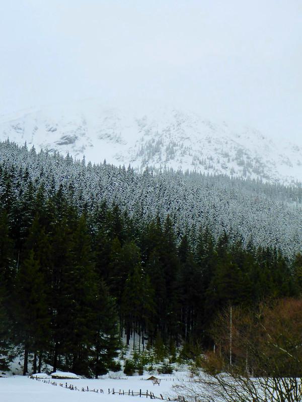 um Pec pod Sněžkou, okres Trutnov, Královéhradecký kraj, Severovýchod, 542 21, Česko