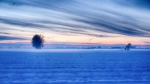 winter schnee snow landschaft landscape sonnenuntergang sunset baum tree