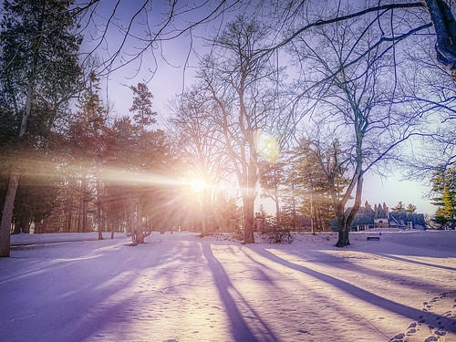 guesthouse michigan february sunset snow winter lakeorion unitedstates