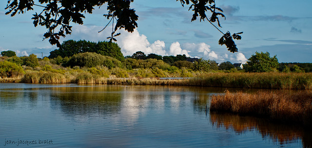 Marais de Kerdual - La Trinité sur Mer