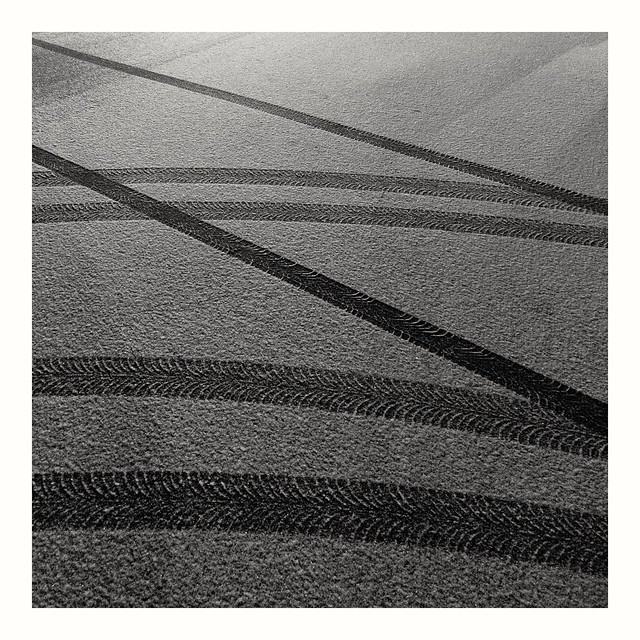 Lines of life?