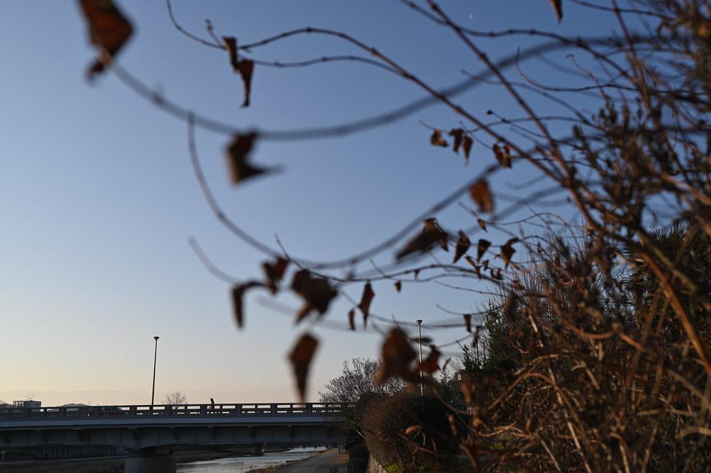 Winter Bridge Road