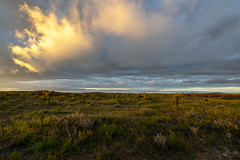 Esperance Sandplain/Sunset/Clouds/Ocean