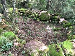 Après démaquisage, vestiges de caseddi près du PR3bis