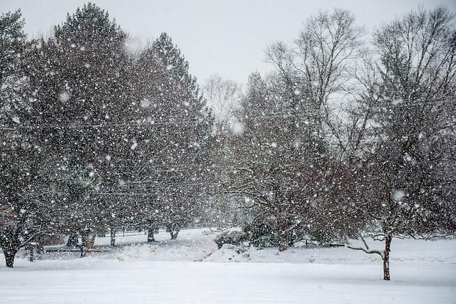 Doylestown PA: Snow