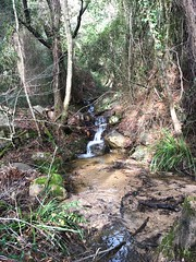 Ruisseau (Ranedda ?) croisant le PR3bis