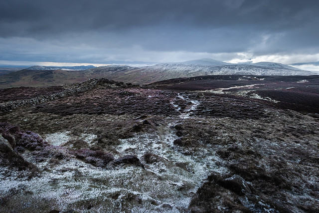 Frozen Path.jpg