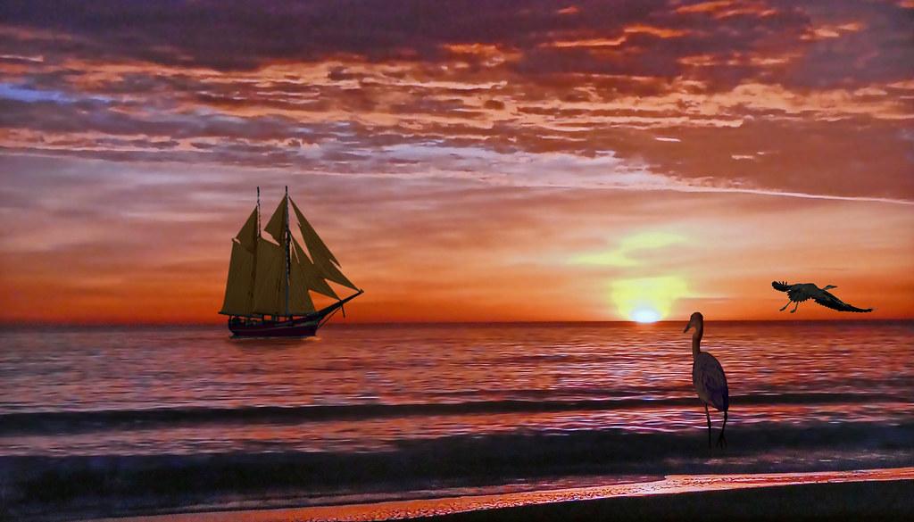 MALDIVES at sunset - A heron admires the sailboat!