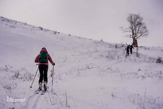 20210206 Blister Swap Skiventure_7