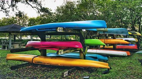 sports pbwa colors rowingclub verobeach morning ipadedit snapseed leicaq2 boats rowing shells