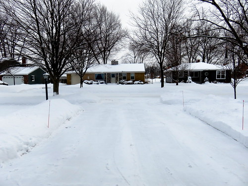 the view from our driveway