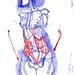 Die Gestalt Des Menchen (XLV) - Artist: Leon 47 ( Leon XLVII ) Sketch, Sketches, Schizzo, Schizzi