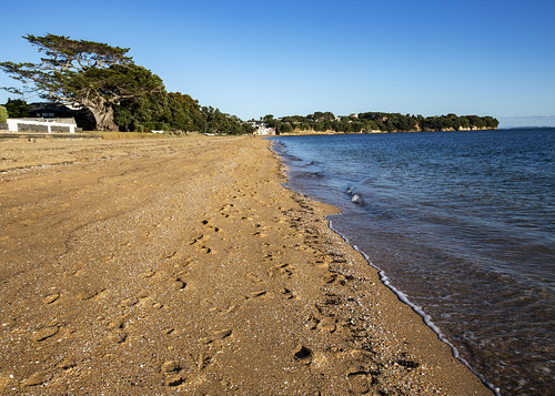 nz newzealand hauraki gulf beach sunrise tide morning landscape waterscape cheltenham northhead northshore auckland
